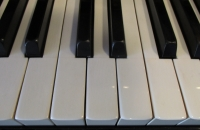 koncertowe-pianino-Petrof-w-politurze-klawiatura