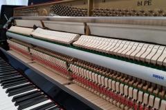 pianino Yamaha B1 PE